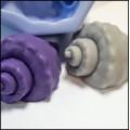 Морская раковина  3D
