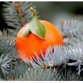 Апельсин новогодний 10 мл